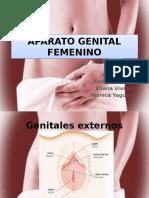 aparatogenitalfemenino-130823043744-phpapp02