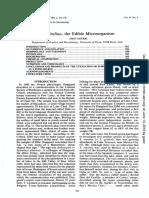 Microbiol. Rev.-1983-Ciferri-551-78