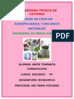 Trabajo de Investigacion Bioquimica
