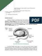 Psychology PD Introduction