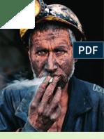 IRES_MINERII_INTRE PERCEPTII PUBLICE SI AUTOPERCEPTIE