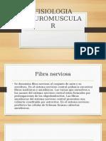 Fisiologia Neuromuscular