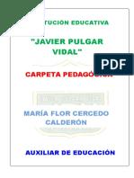 Carpeta Pedcarpeta pedagogica