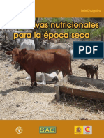 Alternativas Nutricionales Epoca Seca