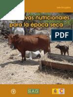 Alternativas Nutricionales Epoca Seca