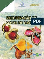 Manual Recuperacao Florestas de Galeria