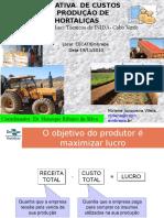 Estimativa de Custos de Producao de Horticolas