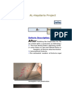 Defects Primary Report