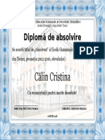 Diploma scoala 11