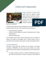 3.1. Características Del Componente Educativo Final