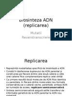 Biosinteza ADN