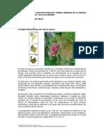 Plan Maestro de Espacios Públicos Verdes Urbanos de La Región