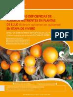 EFECTO Deficiencia de Nutrientes Lulo