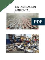 La Contaminacion Ambiental-walter Duran