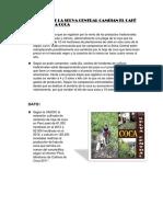 Campecinos de La Selva Central Cambian El Café y Cacao Por La Coca