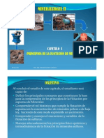 CAPITULO I PRINCIPIOS DE FLOTACION DE MINERALES
