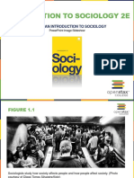 OpenStax_Sociology2e_CH01_ImageSlideshow-1.pdf
