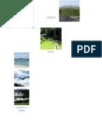 anexos parques nacionales.doc