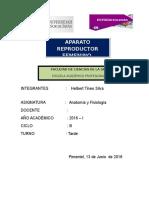 anatomia nuevo.docx