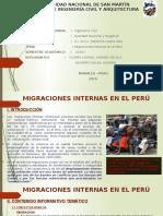Realidad Nacional-migraciones en El Peru Trabajo Nº2