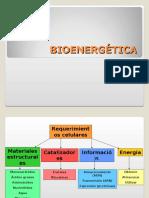 bioenergética power 2007 (1).ppt