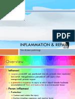 Inflammation & repair.pdf