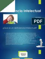 Discapacidad Intelectual (Trastorno Del Desarrollo Intelectual)
