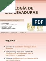FISOLOGÍA-DE-LAS-LEVADURAS-1751-1-1.pptx