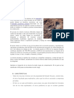 Minería y Pesca