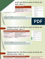 Categorización del Marco para el item.pptx