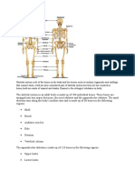 Skeletal system is all of the bones in the body and the tissues such as tendons.docx