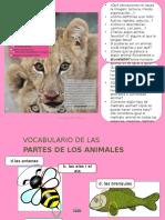 Es 3 Voc Animales Pp 01