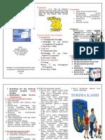 leaflet SAP implant