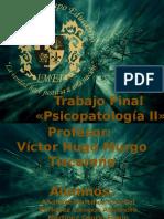 Presentación Trabajo Final  «Psicopatología II