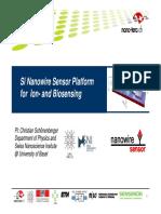 Nanowire Sensor 2010