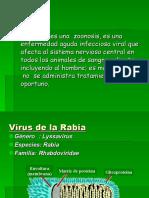 Percy Rabiaz