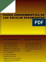 teoria-endosimbiotica