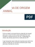 Insulina de Origem Animal