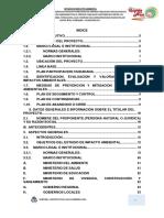 1. ESTUDIO DE IMPACTO AMBIENTAL PORYECTO ACOBAMBA.pdf