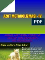 B-II (2007-2008)-6.ders-azot-met-IV