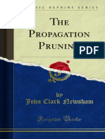 The Propagation Pruning 1000178441