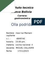 Intituto Tecnico NUEVA BOLIVIA