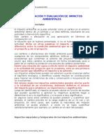 Identificación y Evaluación de Impactos Ambientales1
