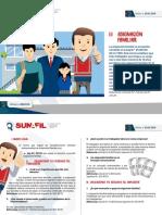 1.1 PF DS Asignacion Laboral