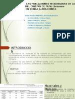 Estudio de Las Poblaciones Microbianas de La Rizósferapara Exa