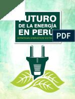 Futuro de La Energía en Perú 2016