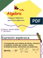 Algebra Septimo Básico Para Imprimir