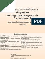 Grupos patogenos E.coli