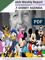 globalwatch-Disney.pdf