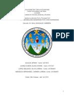 Responsabiliad Civil Cosas Inanimadas Investigacion